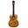 Занимается акустическими гитарами