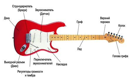 Составные части электро гитары