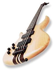Басс гитара. Вид сбоку